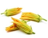 Picture of Courgette (Zucchini) Flowers