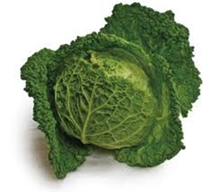 Picture of Cabbage - Savoy