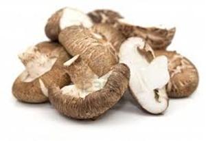 Picture of Mushrooms - Shitake whole