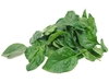Picture of Spinach - English Baby Leaves - 80g