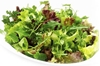 Picture of Herb Salad Mix