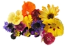 Picture of Edible Flower Mix - 15g
