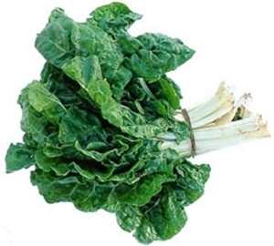 Picture of Chard - Swiss