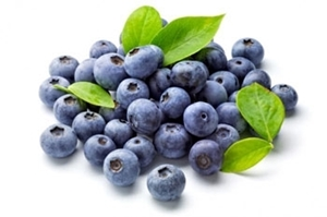 Picture of Blueberries  - 125g