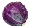 Picture of Cabbage - Baby  Red