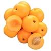 Picture of Nectacot - yellow nectarine