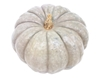 Picture of Pumpkin - Small Queensland Blue