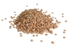 Picture of Lentils, Brown - 500g