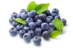 Picture of Blueberries - frozen 1kg SPECIAL