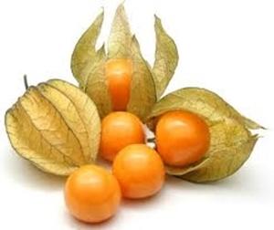 Picture of Gooseberries - Frozen 1kg